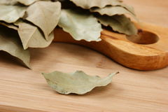 Dry bay leaf on a wooden kitchen Royalty Free Stock Photography