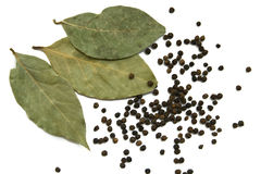 Dry bay leaves  and black paper Stock Images