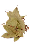 Dry bay leaves. Isolated on a white background stock photos