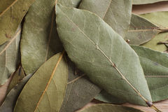 Dry bay leaves. Spilled on wooden board Stock Photos
