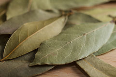Dry bay leaves. Spilled on wooden board Royalty Free Stock Photos