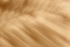 Dry beach sand as background. Top view royalty free stock photo