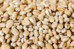 Dry bean and nut. Close up of dry bean and nut Royalty Free Stock Photos