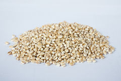 Dry bean and nut. On white background Stock Photo