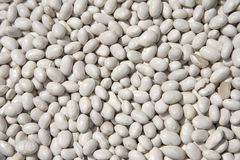 Dry beans. On a  counter in an open marketplace Stock Images