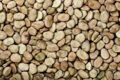 Dry beans as background. Top view royalty free stock photos