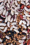 Dry beans Royalty Free Stock Photos