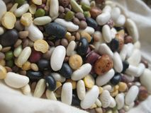 Dry beans mix Royalty Free Stock Photos
