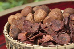 Dry Betel nuts or Areca Royalty Free Stock Image