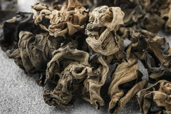 Dry black Chinese mushrooms Stock Photography