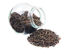 Dry black tea of big leaves Royalty Free Stock Photography