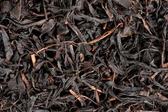 Dry black tea leaves Royalty Free Stock Photo