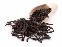 Dry black tea leaves Stock Image