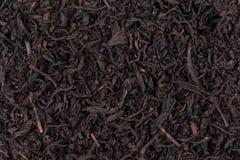 Dry black tea Royalty Free Stock Photo