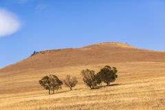 Dry Blue Landscape Royalty Free Stock Image