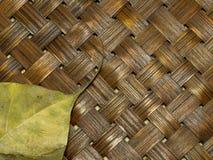 Dry Bo leaf isolated on wood weave background Royalty Free Stock Photos