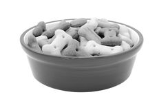 Dry bone-shaped dog biscuits in a pet food bowl Stock Image
