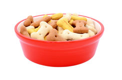 Dry bone-shaped dog biscuits in a red pet food bowl Stock Images