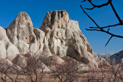 Dry branch on a garden of beautiful rocky ledges and morning blue sky stock image
