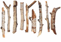 Dry  branches of birch  isolated on white Royalty Free Stock Photography