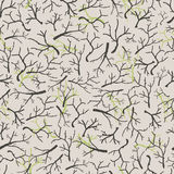 Dry branches pattern Royalty Free Stock Photography