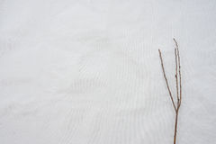 Dry branches on white muslin fabric Royalty Free Stock Image