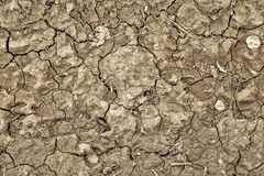 Dry and broken field Royalty Free Stock Photos