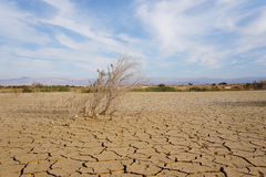 Dry and broken land. No water to be found in this resevoir in the israeli desert but it's still beautiful Stock Images