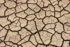 Dry brown cracked earth texture. Beautiful Dry brown cracked earth texture stock photos