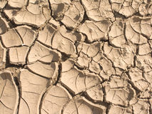 Dry brown lifeless desert land closeup Royalty Free Stock Image
