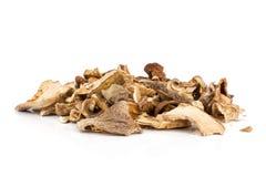 Dry brown mushroom boletus edulis isolated on white royalty free stock images