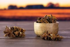 Dry brown star anise fruit autumn field behind. Lot of whole dry brown star anise fruit stack with wooden bowl with autumn field and sunset in background royalty free stock images