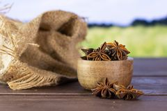 Dry brown star anise fruit with field behind. Lot of whole dry brown star anise fruit jute bag with wooden bowl with green wheat field in background stock photography