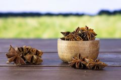 Dry brown star anise fruit with field behind. Lot of whole dry brown star anise fruit stack with wooden bowl with green wheat field in background royalty free stock photos