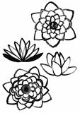 Dry brush  lotus set Royalty Free Stock Photography