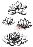 Dry brush  lotus set Royalty Free Stock Photos