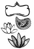 Dry brush  lotus set Royalty Free Stock Image