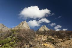 Dry burned fynbos and clouds stock images
