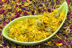 Dry calendula in bowl with dry herbal tea Stock Image