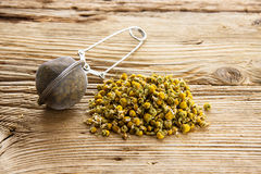 Dry camomile with tea strainer on Royalty Free Stock Images