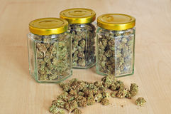 Dry cannabis buds stored in glass jars. Photo of dry cannabis buds stored in a glass jars Royalty Free Stock Photography