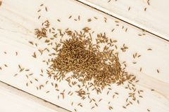 Dry caraway fruit on grey wood. Lot of whole dry caraway fruits flatlay on white wood stock photography