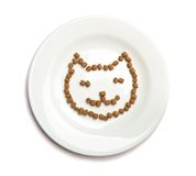 Dry cat food Stock Photography