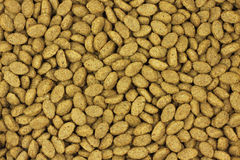 Dry cat food background Royalty Free Stock Photos
