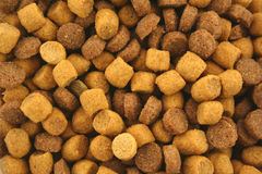Dry Cat food background texture Stock Image