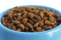 Dry cat food in blue bowl, detail on white. Royalty Free Stock Image