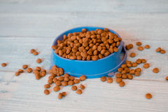 Dry cat food in blue bowl. Cat food in bowl on wood background stock photos