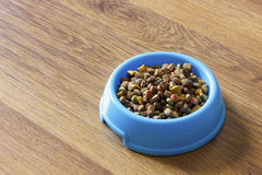 Dry cat food in blue bowl  on wood laminate floor. Stock Photography