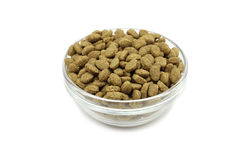 Dry cat food in a glass container Stock Images