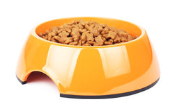Dry Cat Food In Orange Bowl Royalty Free Stock Images